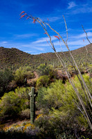 """Point Man and Overwatch"" (Southern foothills of Pass Mountain, Tonto National Forest, Arizona)"