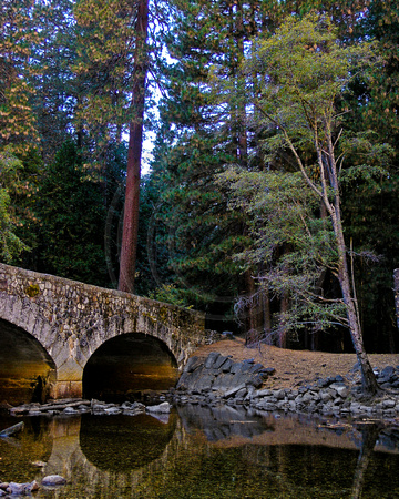 Tree and bridge over Merced River, Yosemite National Park