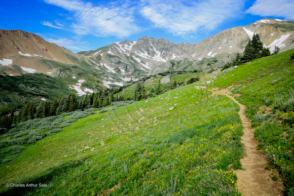 Herman/Watrous Gulch Loop, Arapaho NF, Colorado